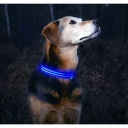 Svítící obojek - modrý M
